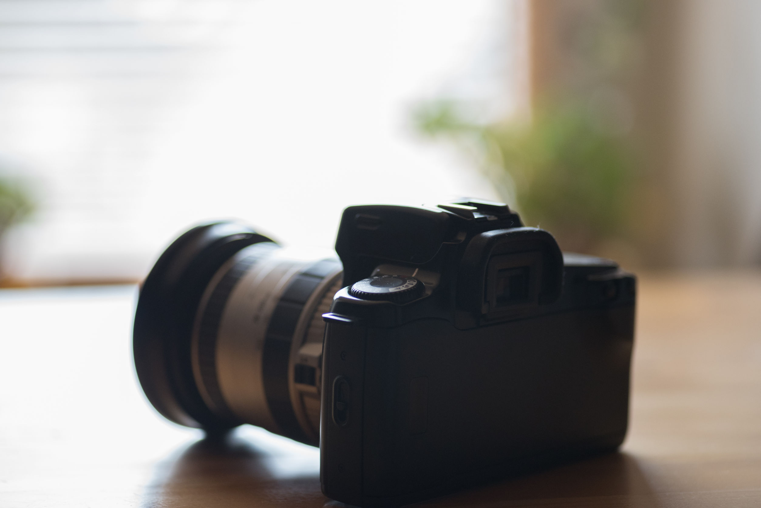 Best DSLR Camera 2020: The ultimate guide